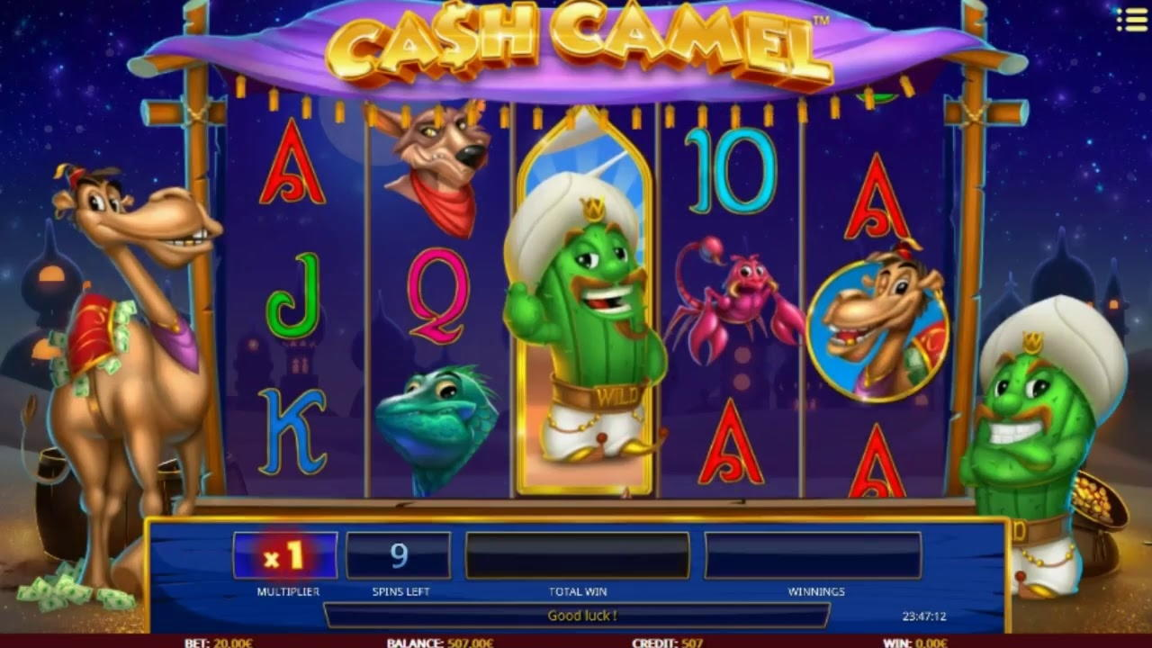 355% Match Bonus Casino på Dream Vegas Casino