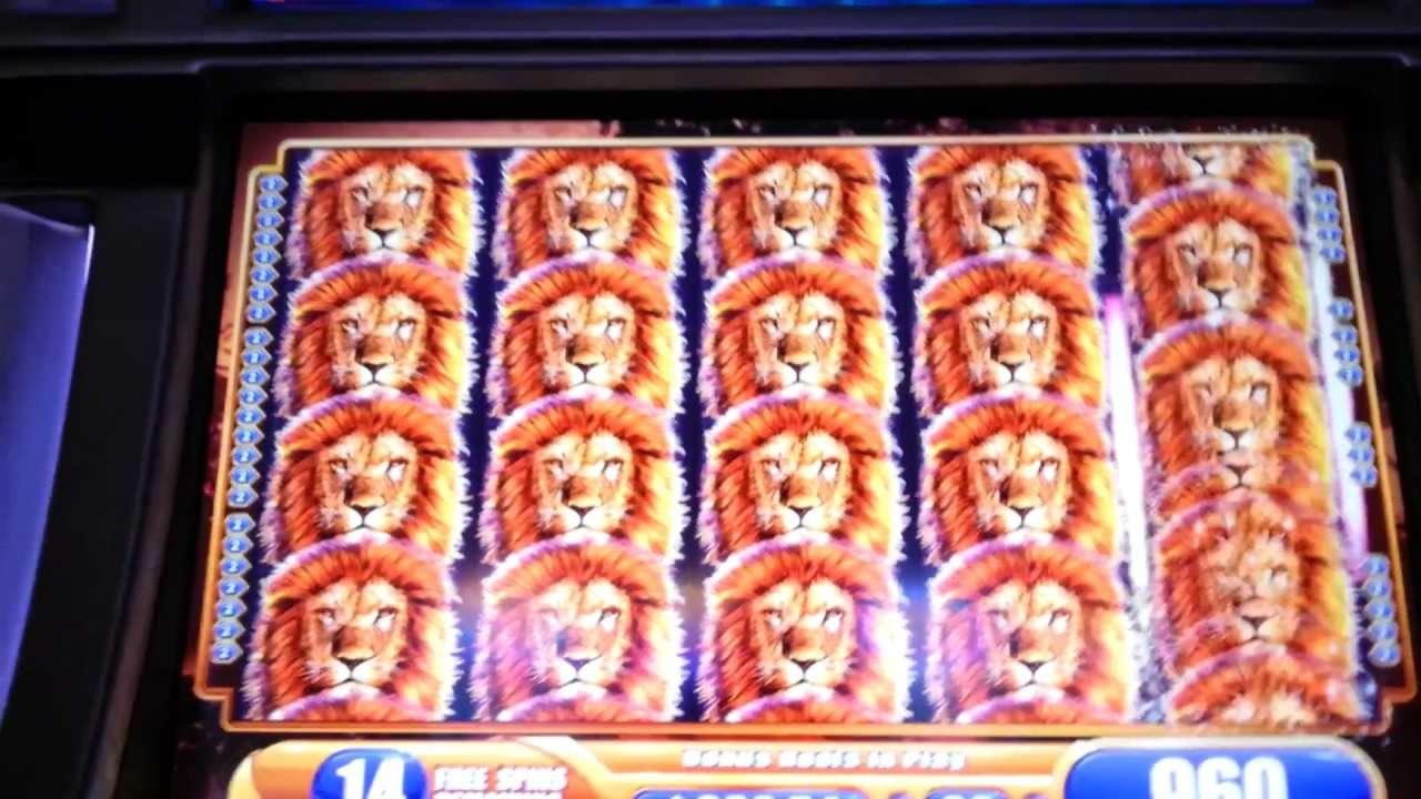 $4310 No Deposit Bonus Code at Slotty Dubai Casino